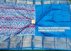 Sky blue pochampally ikkat kanchi border lehenga