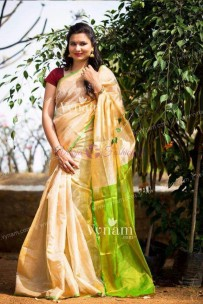 Cream and green uppada tissue sarees