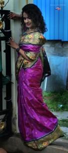 Dark purple handloom ikkat sarees
