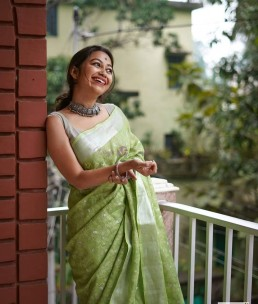 Green 120 counts linen embroidered sarees