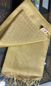 Light gold pure tussar tissue silk self woven sarees